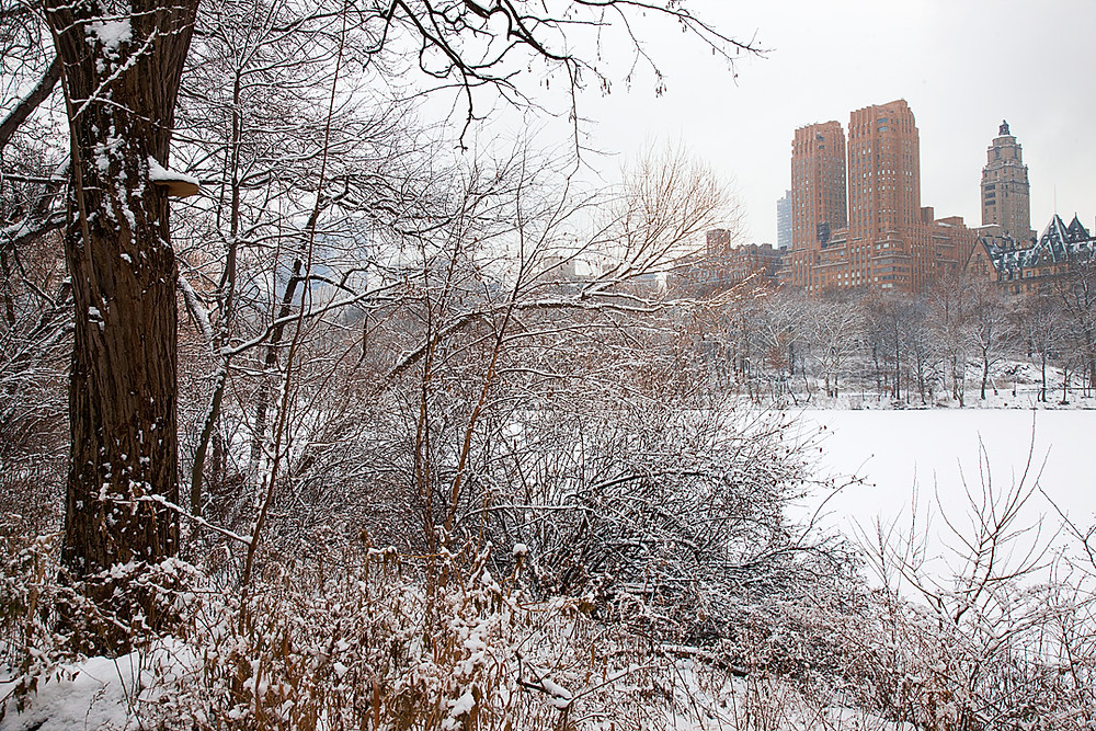 Central Park in the snow looking west toward Dakota at 72nd street