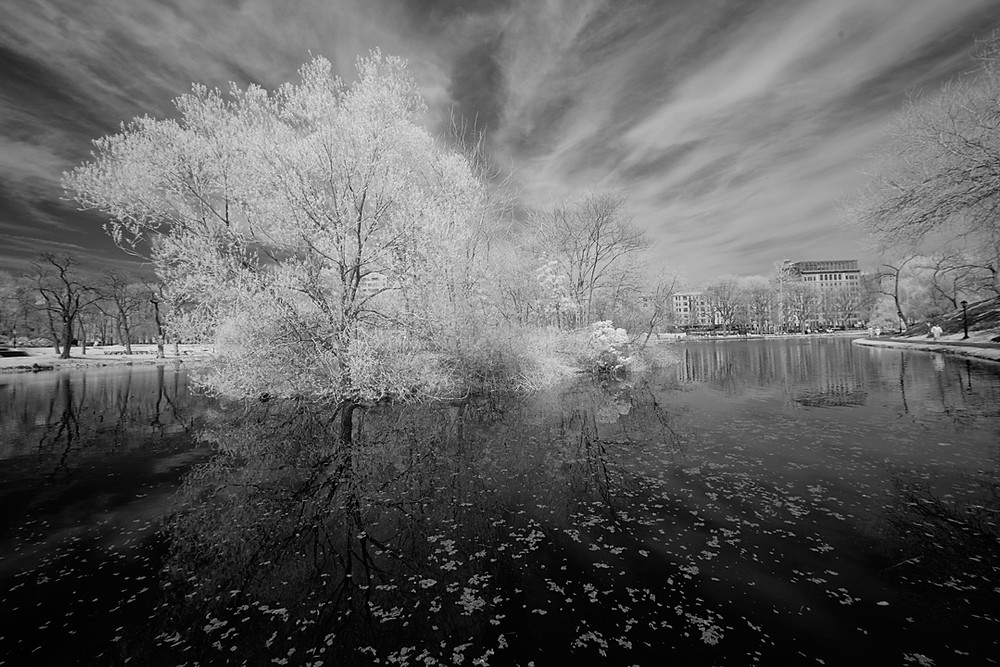 Harlem Meer in Infra-Red on 14 April 2011