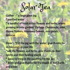 Solar Tea Recipe