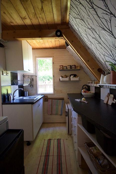 RabunaDesign interior design Prague wooden summer house cottage kitchen black white Prague Czech cabin rustic scandi