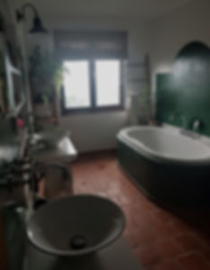 interior design Prague Czech bathroom green brick tiles Tuscan rustic indoor plants