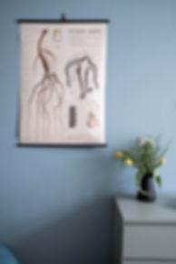 návrhy interiérů rabunadesign design dekrace vintage plakát školní kytka