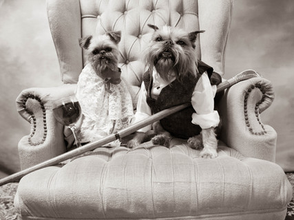 Old Time Pups