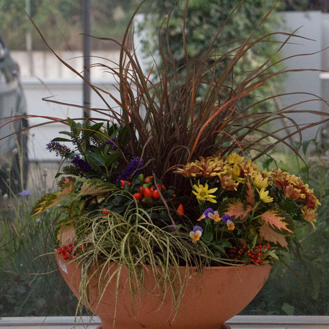Fall Container Arrangement