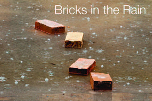 Bricks in The Rain – Catalogue – 2012