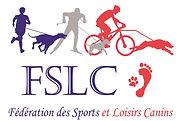 FSLC fond blanc.pdf - Microsoft Edge.jpg
