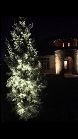 Landscape Lighting JXC Landcaping Austin, Texas (3)