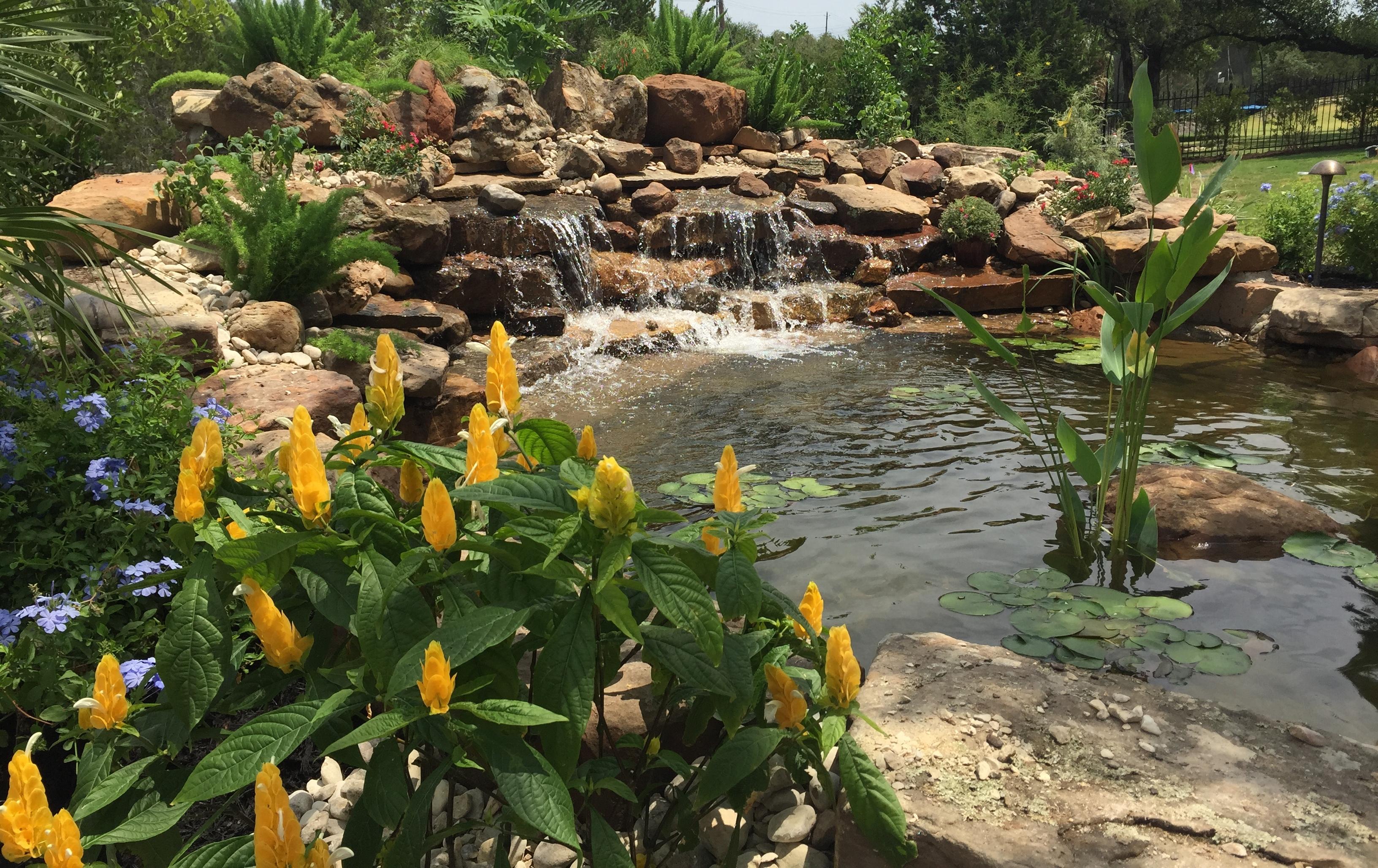 JXC Landscaping Koi Pond Installation Bella Montagna Lakeway TX (12).jpg