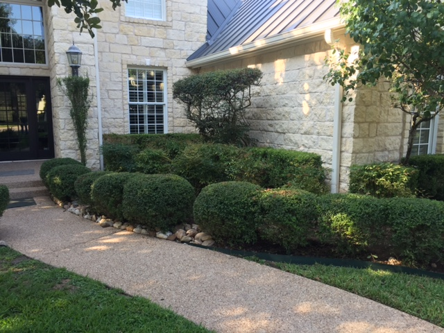 Before Pics JXC Landscaping (6)