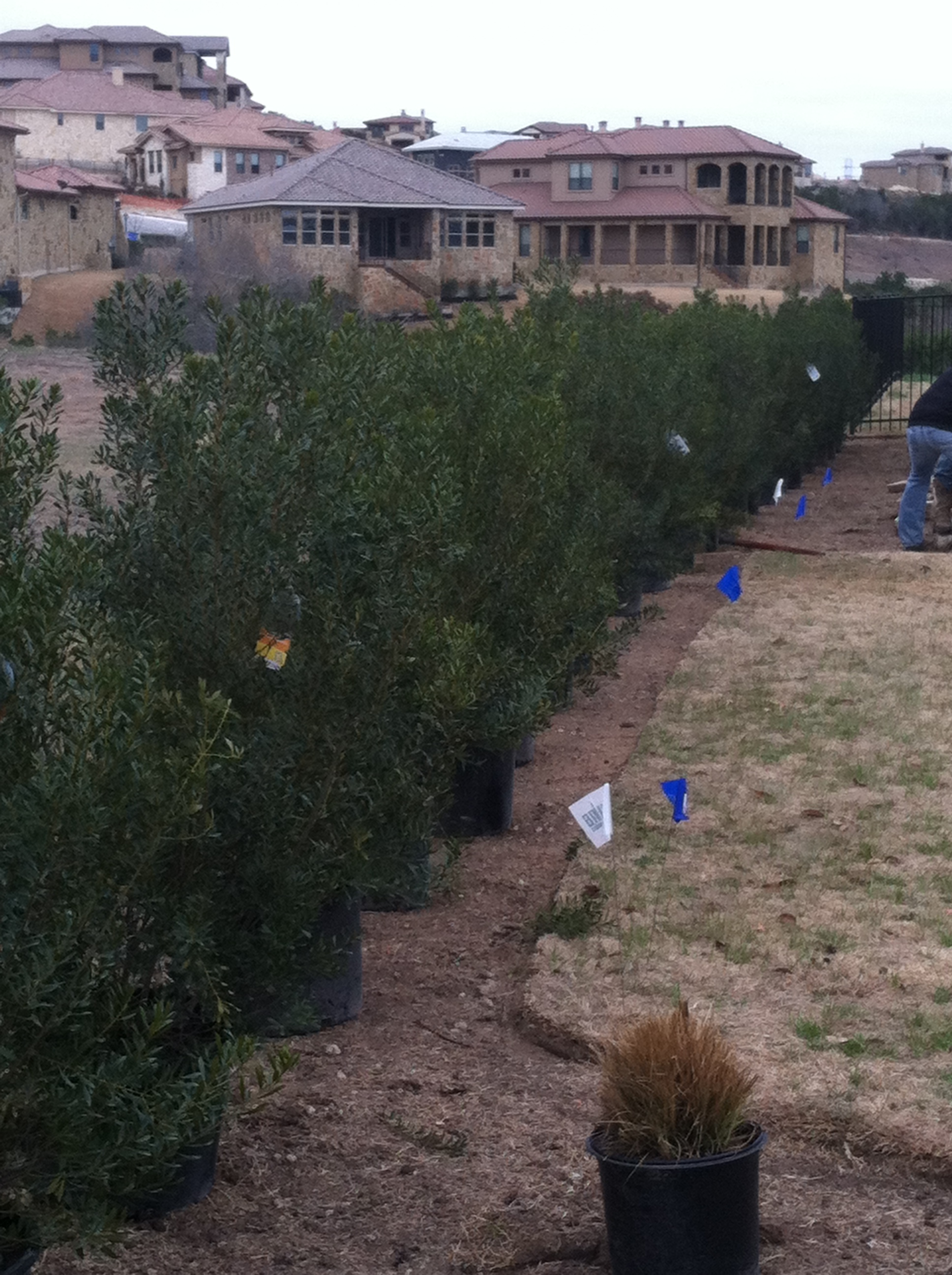 JXC Landscaping Renovation Rough Hollow, Lakeway TX (5)