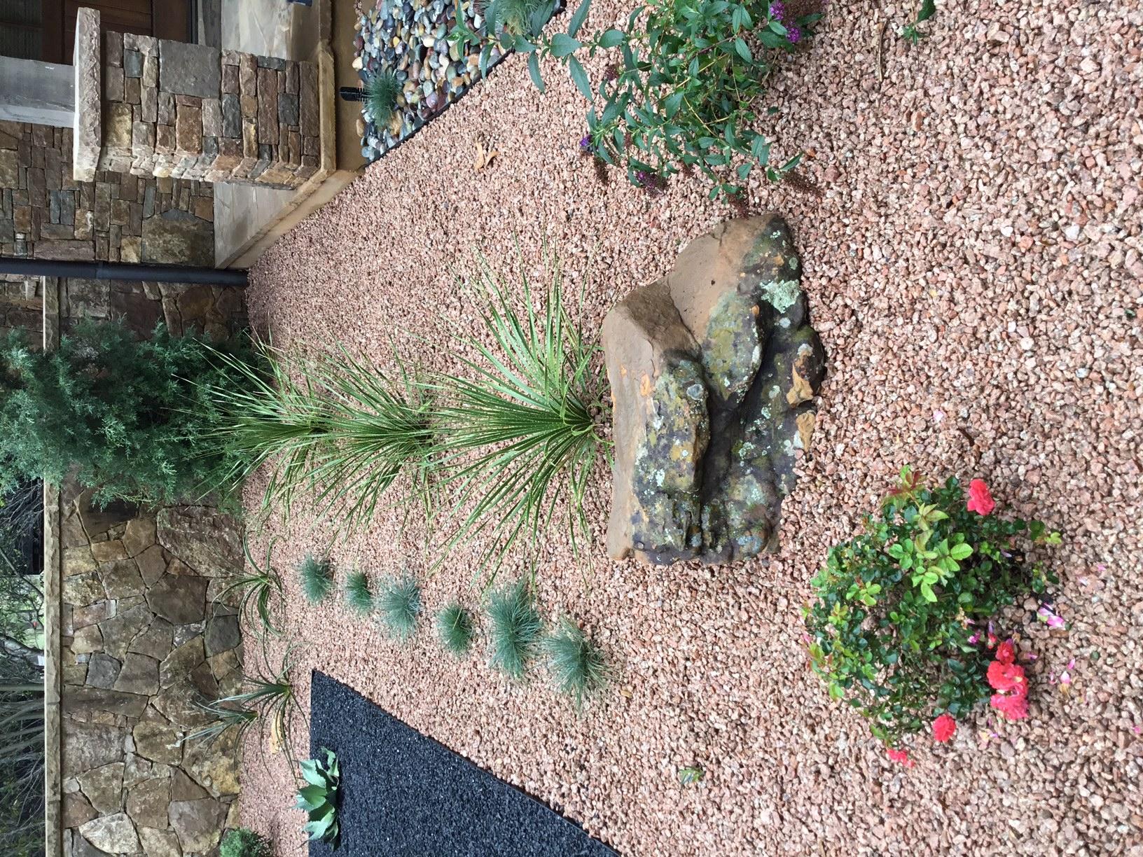 Modern, Drought Tolerant, Landscape  Glass Garden by JXC Landscaping (23)