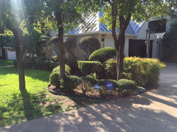 Before Pics JXC Landscaping (2)