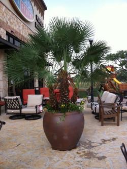 San Antonio pot installation
