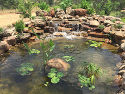 JXC Landscaping Koi Pond Installation Bella Montagna Lakeway TX (11).jpg