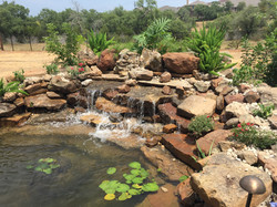 JXC Landscaping Koi Pond Installation Bella Montagna Lakeway TX.jpg