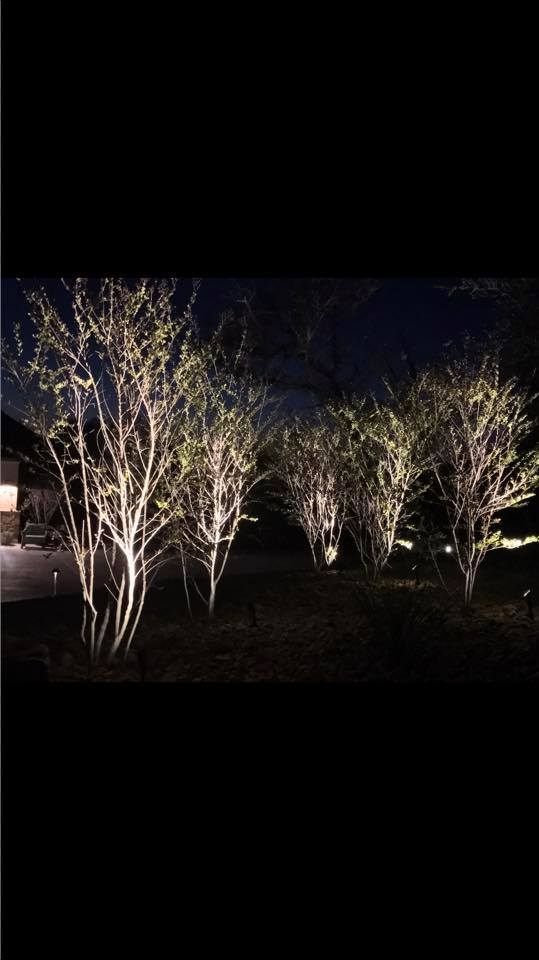 Landscape Lighting JXC Landcaping Austin, Texas (5)