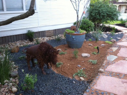 JXC Landscaping install and rock work (58).jpg