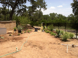 JXC+Landscaping+Installation+Coward+Residence+(25).jpg