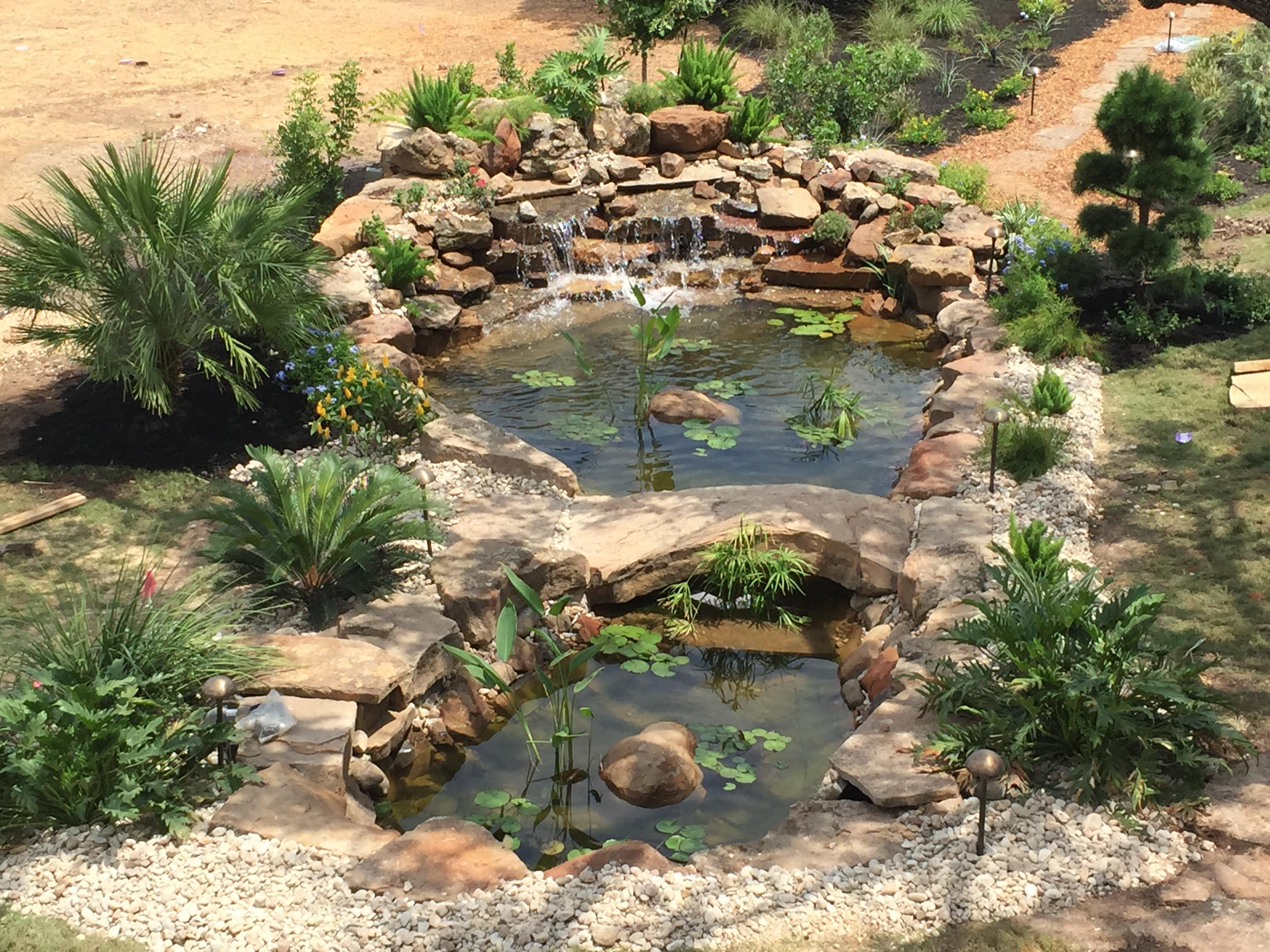 JXC Landscaping Koi Pond Installation Bella Montagna Lakeway TX (2).jpg