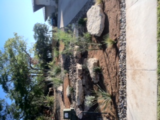 JXC Landscaping Installation Rough Hollow final pics (8)