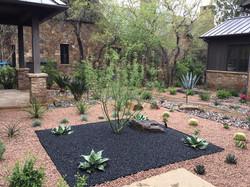 Modern, Drought Tolerant, Landscape  Glass Garden by JXC Landscaping (7)