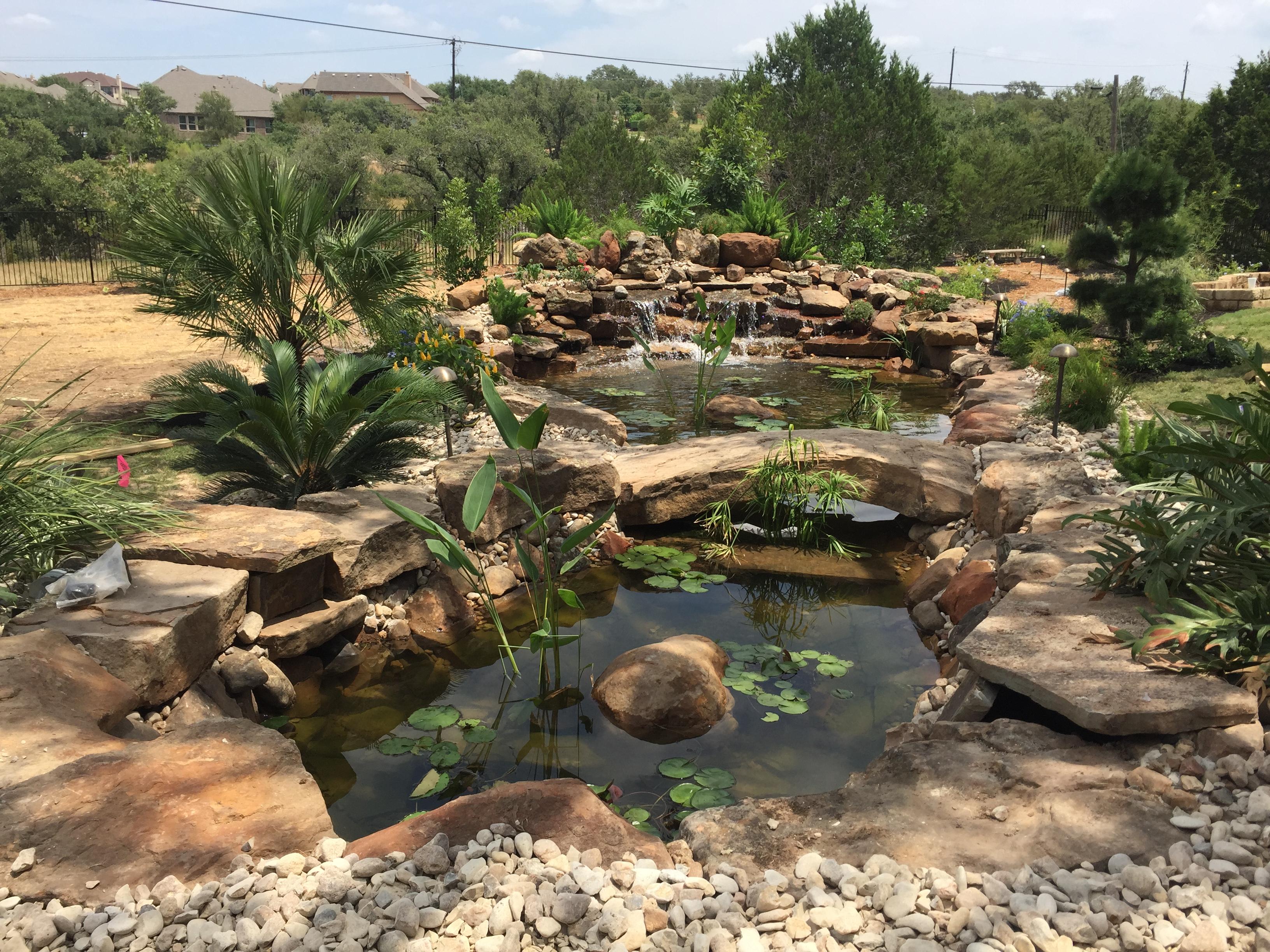JXC Landscaping Koi Pond Installation Bella Montagna Lakeway TX (5).jpg