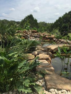 JXC Landscaping Koi Pond Installation Bella Montagna Lakeway TX (7).jpg