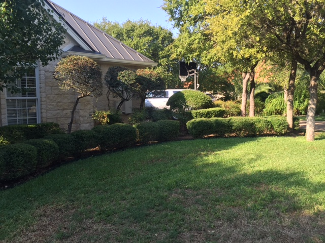 Before Pics JXC Landscaping