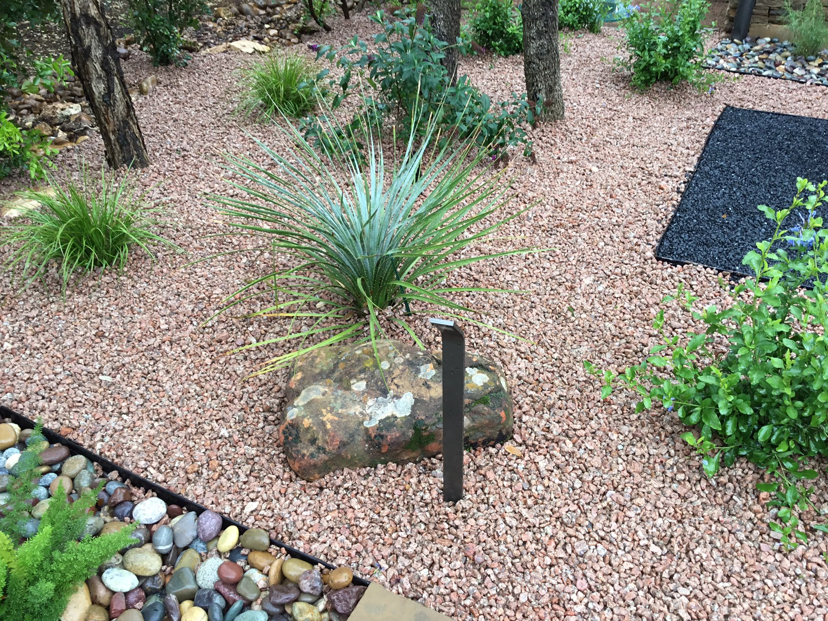 Modern, Drought Tolerant, Landscape  Glass Garden by JXC Landscaping (16)