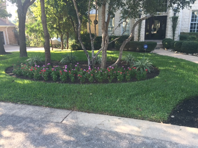Before Pics JXC Landscaping (8)