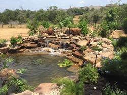 JXC Landscaping Koi Pond Installation Bella Montagna Lakeway TX