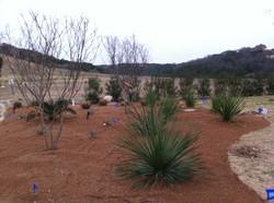 JXC Landscaping Renovation Rough Hollow, Lakeway TX (11)