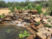 JXC Landscaping Koi Pond Installation Be