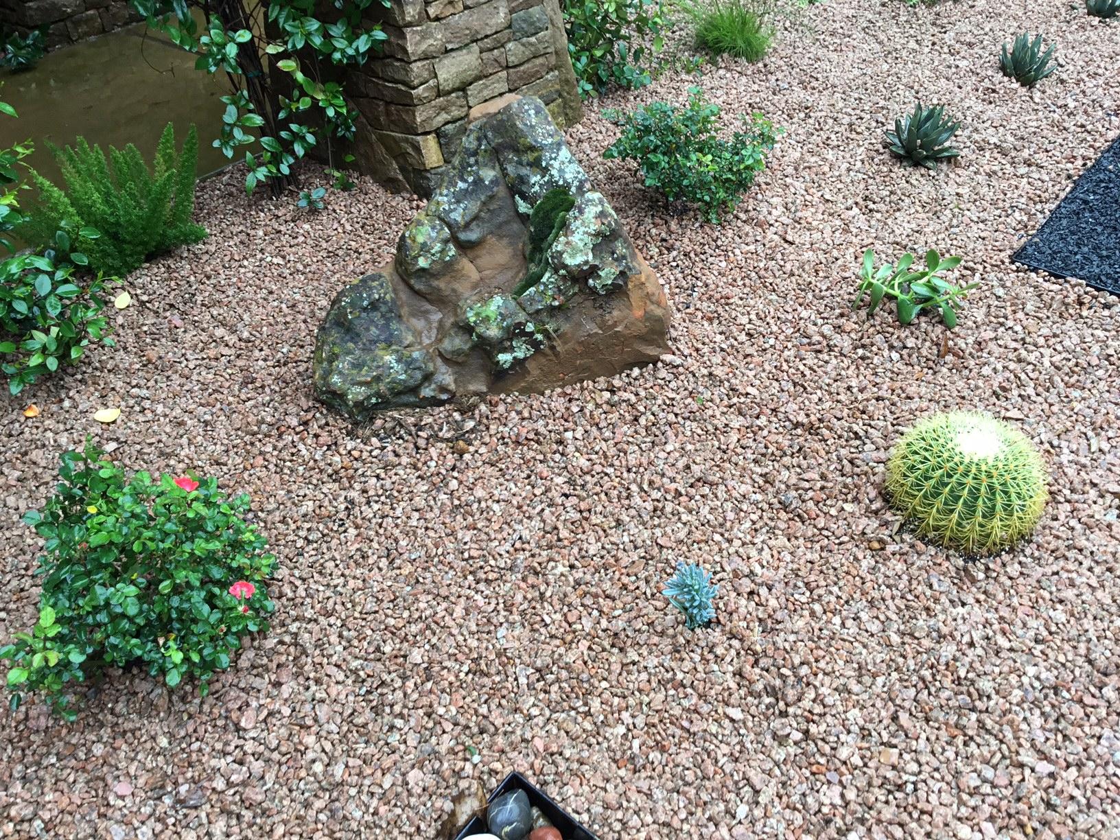 Modern, Drought Tolerant, Landscape  Glass Garden by JXC Landscaping (19)