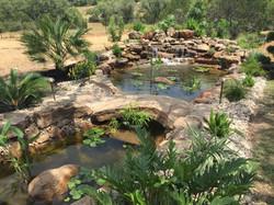 JXC Landscaping Koi Pond Installation Bella Montagna Lakeway TX (10).jpg
