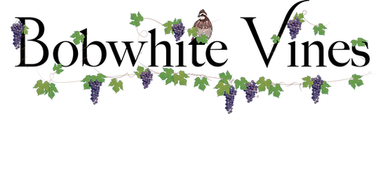 Bobwhite Vines - bobwhite center.png