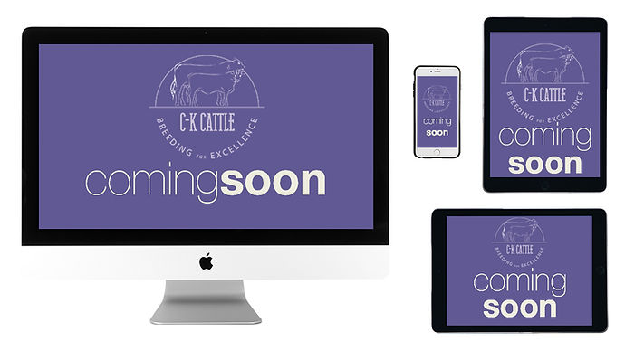 coming soon ck cattle.jpg