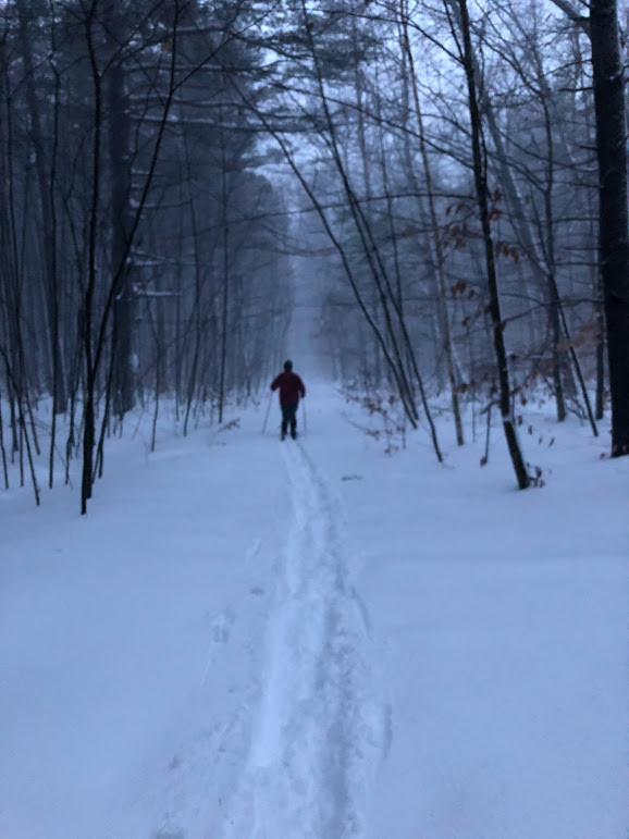 skiing newington town forest.jpg