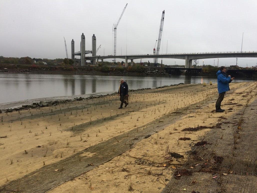 living shoreline installation.JPG
