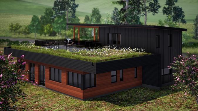 Plan d'architecture d'une maison écoénergétique avec toit vert