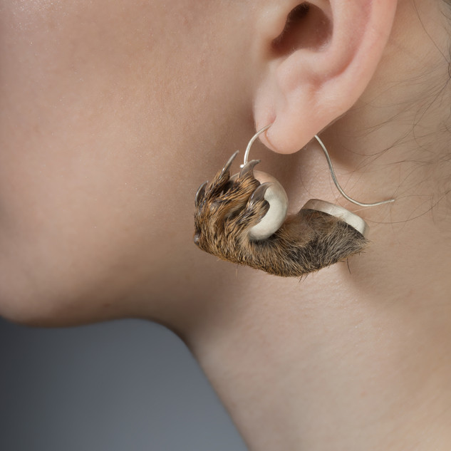SquirrelEarrings.jpg