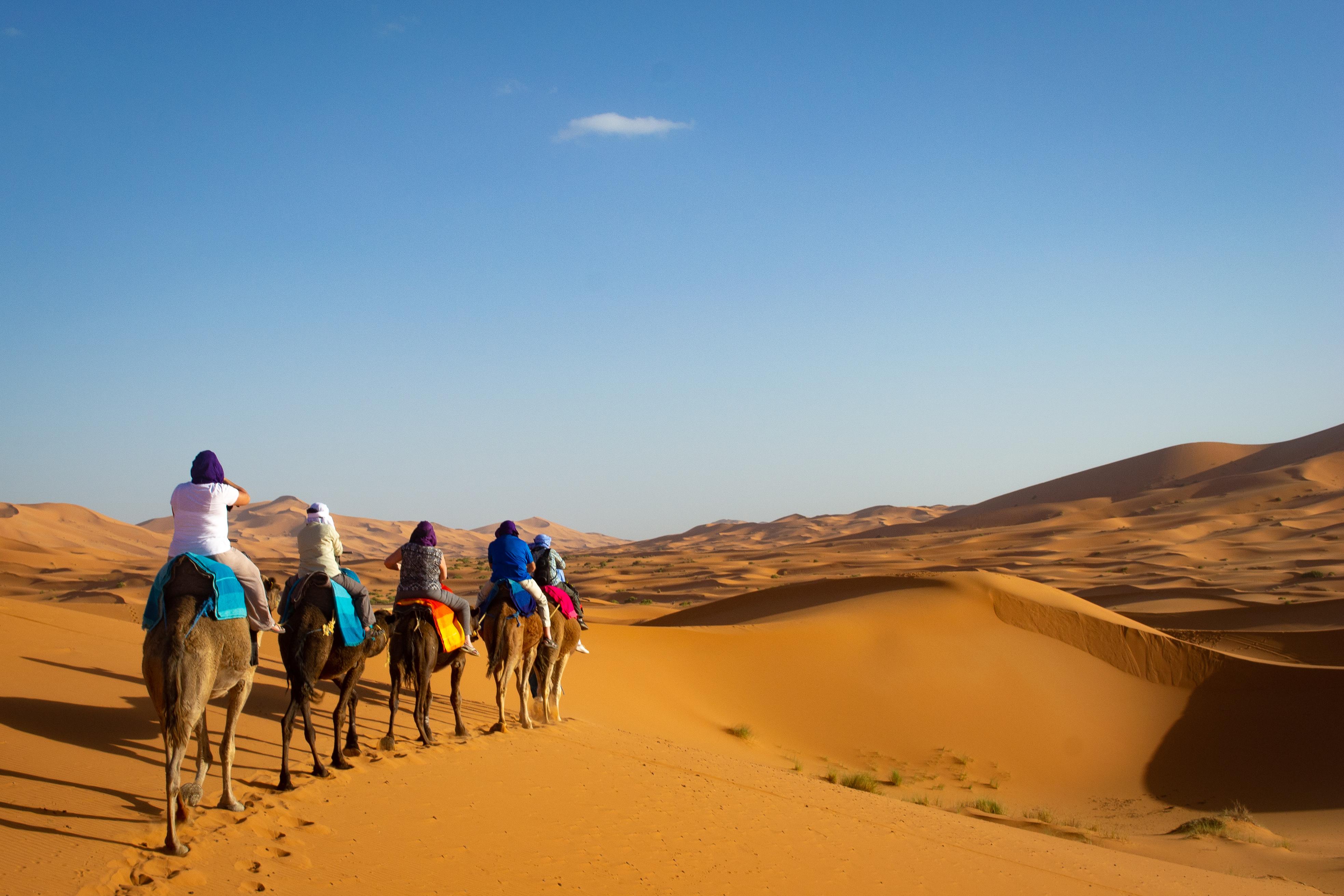 46 Into The Sahara