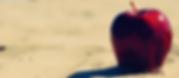 Screen Shot 2020-04-23 at 5.37.33 PM.png