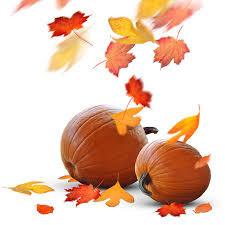 Community Living Association 2nd Annual Fall Fling!