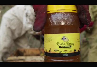 Ruaha Farm business concept