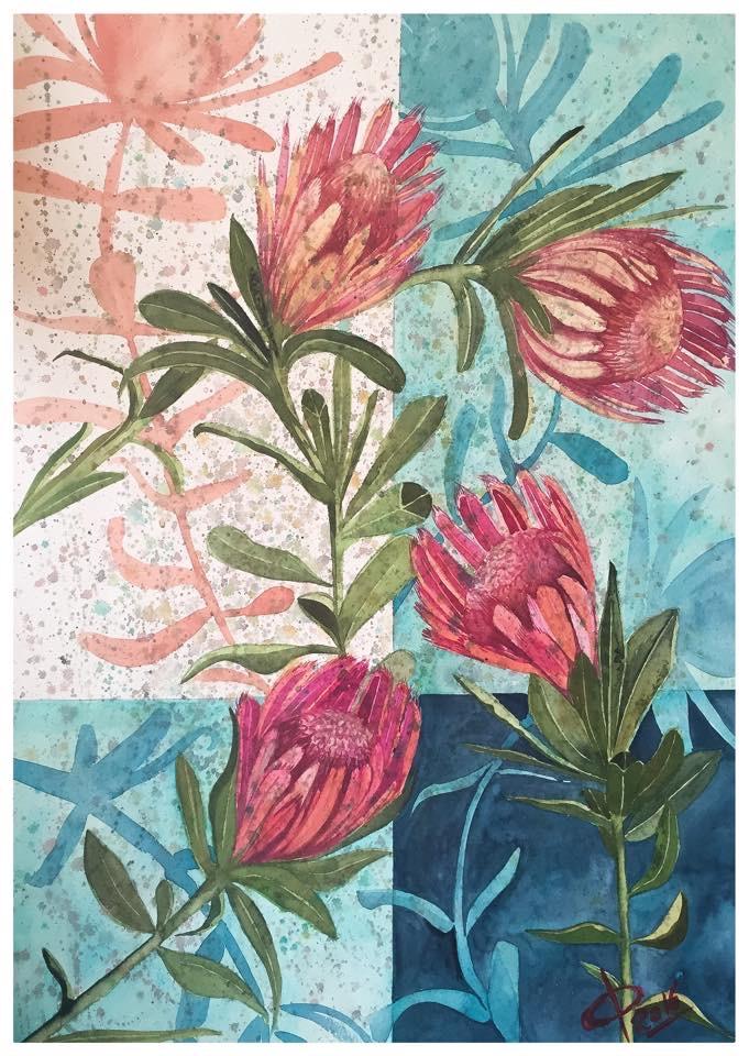 Australian Protea