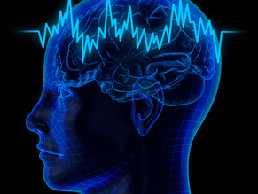 Neuroscience Looks at Self-Consciousness