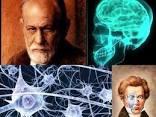 A Neuropsychoanalytic Model of Brain Function