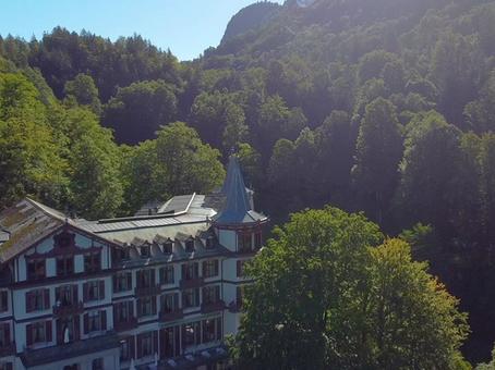 Baumpflege im Naturpark Giessbach