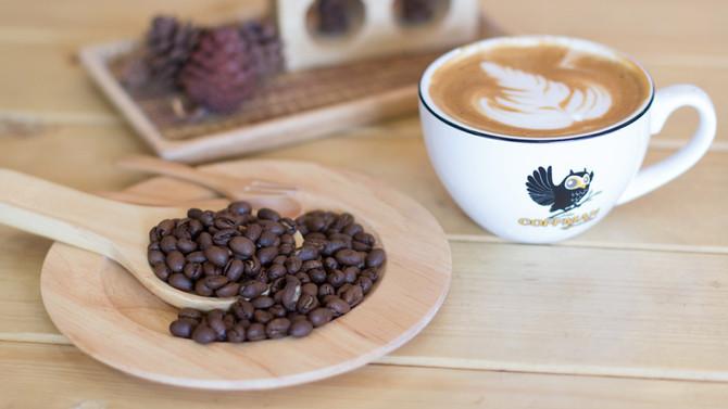 เมล็ดกาแฟ Peaberry คืออะไร?
